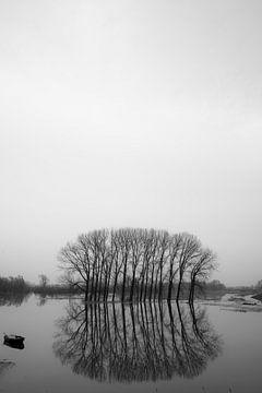 Hoogwater  von Alex van Doorn
