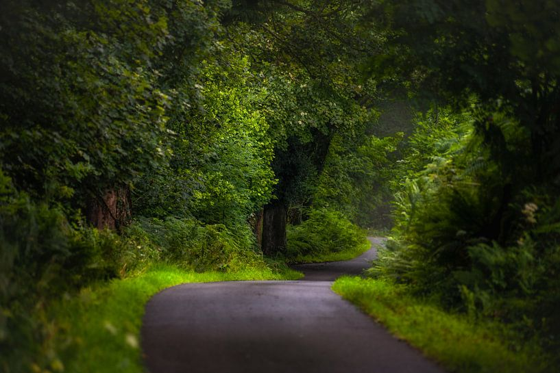 Weg op Ardnamurchan (Schotland) van Pascal Raymond Dorland