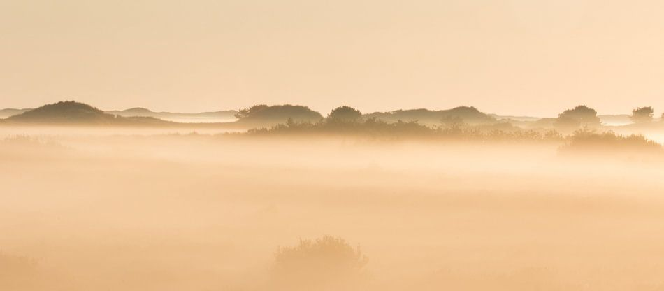 Mistige zonsopkomst  in de duinen van Art Wittingen