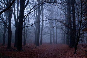 Wald im Nebel von Ilse Jansen