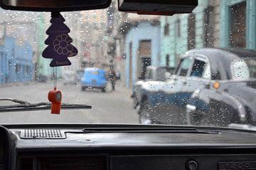 Havana van Dorien Bot