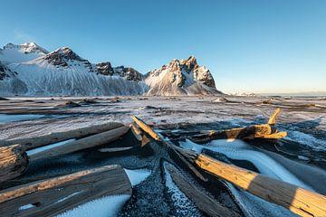 bois flotté pointe vers les plus hauts sommets du Vestrahorn en Islande sur Gerry van Roosmalen