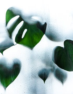 Tropisch klimaat  von Roos Oosterbroek | hand painted prints en fotografie