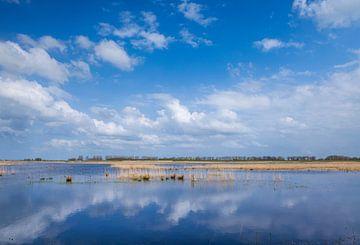 Wasser und Schilf Munnikenland von Eugene Winthagen