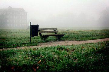 Mistige eenzaamheid van Samira Uddin