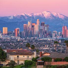 Los Angeles sur Reinier Snijders