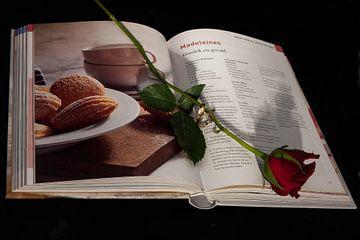 The book of love van Saskia Cloo-Hartsema