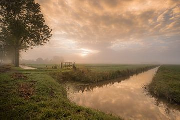 Landleben in Ommerenveld von Moetwil en van Dijk - Fotografie