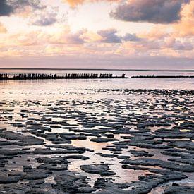 De Friese kust van Charlotte Jalvingh