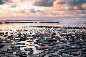 De Friese kust