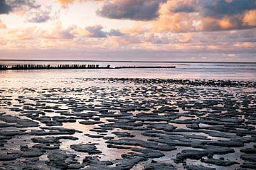 Die friesische Küste von Charlotte Jalvingh