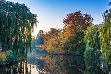 Deventer vogeleiland in herfstkleuren met reflectie in het water. van Bart Ros