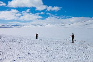 Hardangervidda - Noorwegen
