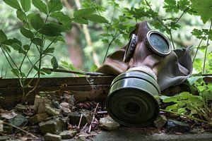 Die Natur gewinnt von Vozz PhotoGraphy