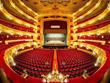 Gran Teatre del Liceu sur Roy Poots