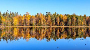 Spiegelbeeld in Zweedse natuur van Fields Sweden