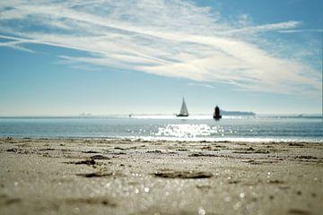 Het strand van Vlissingen van DoDiLa Foto's