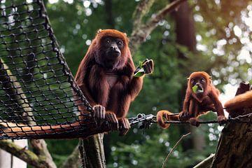 Mutter und Affenbaby von Jaleesa Koelen
