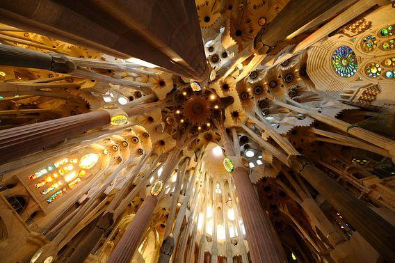 De Sagrada Familia in Barcelona (1) van Merijn van der Vliet