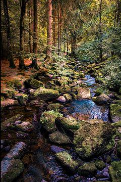 Beek in Bos.  Bayern Duitsland. Woods in Germany van Mariska Asmus