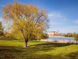 Stadtpark in Schwerin mit Schloss