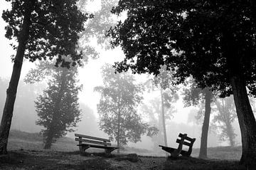 zwartwitte mistbanken (banken in de mist) von Ilja Kalle