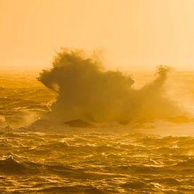 The lion in the waves von Karla Leeftink