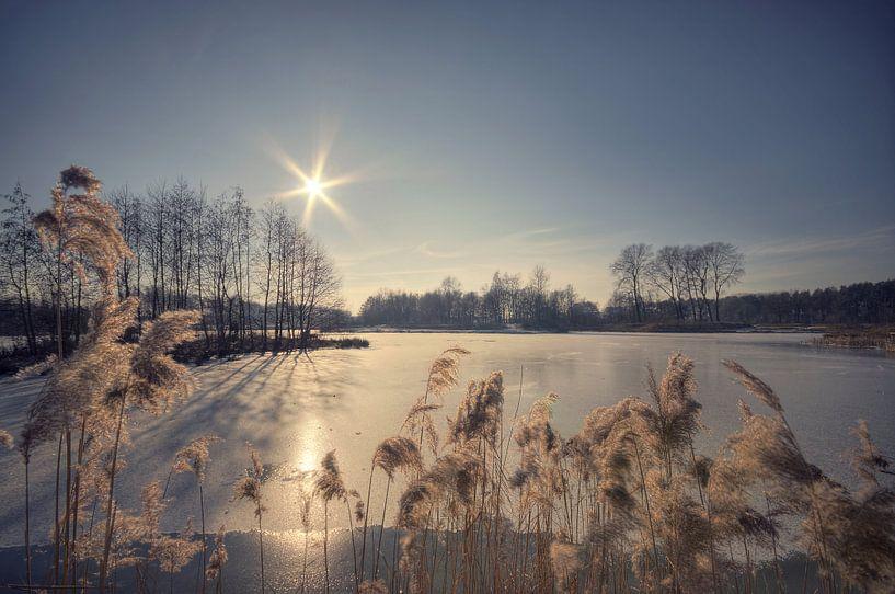 Landschap - Hot & cold van Angelique Brunas