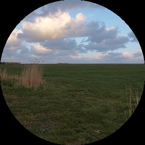 Terschellinger polder van Rinke Velds