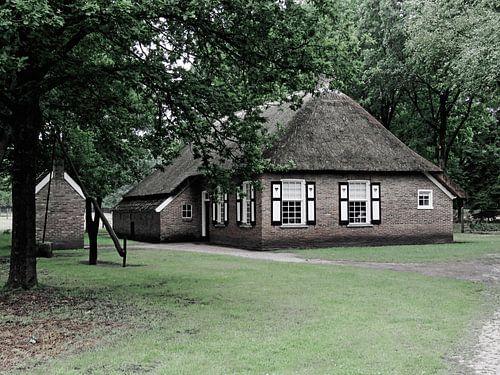 Boerderij  Openluchtmuseum Ellert en Brammert Schoonoord van