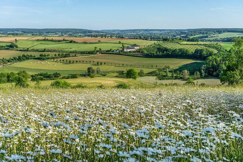 Uitzicht op de Eyserhalte en Eyser heuvelrug van John Kreukniet