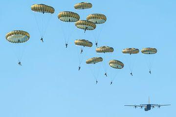Opération Market Garden parachutistes sur Marc Hederik