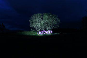 Tanz der Feen von Licht! Fotografie