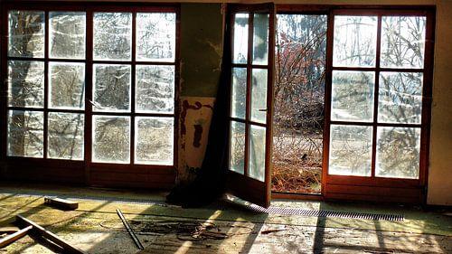 urban/rural decay 04 van