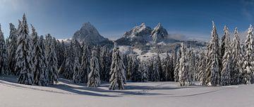 Winter panorama Mythen van Pascal Sigrist - Landscape Photography