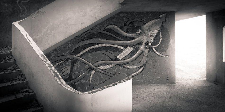 Squid art