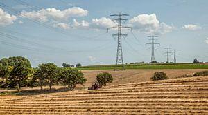 Stro drogen bij Winthagen in Zuid-Limburg