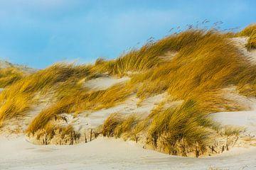 Helgoland Duin van
