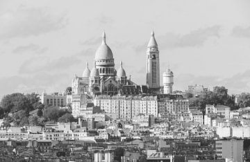 La Basilique du Sacré-Coeur à Paris sur MS Fotografie | Marc van der Stelt
