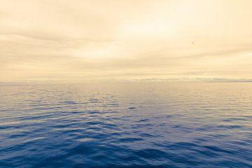 Zicht op een kalme monochrome zee van Dieter Walther