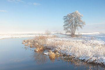Rivier in besneeuwd landschap