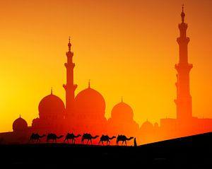 LPH 71330253 Man met kamelen Dubai bij moskee