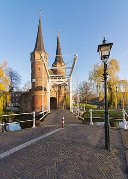 Das Goldene Osttor in Delft von Charlene van Koesveld