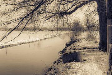 rivier in sneeuwlandschap van Bas Wolfs
