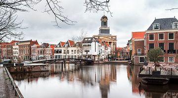 Leiden sur Lorena Cirstea