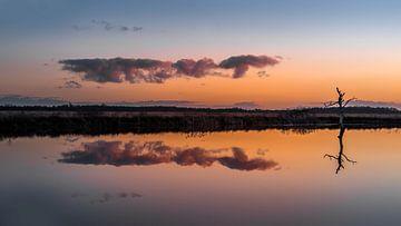 Zonsondergang in het natuurgebied Fochteloërveen van
