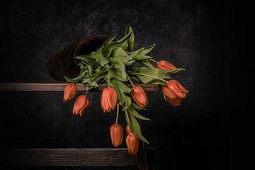 oranje gevallen tulpen van Peter Abbes