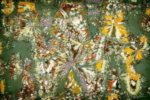 Flicerya signiert von GOOR abstracten