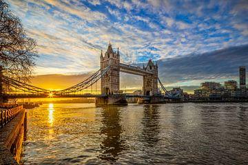 Tower Bridge in London von Dieter Meyrl