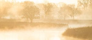 gouden zonsopkomst aan het water